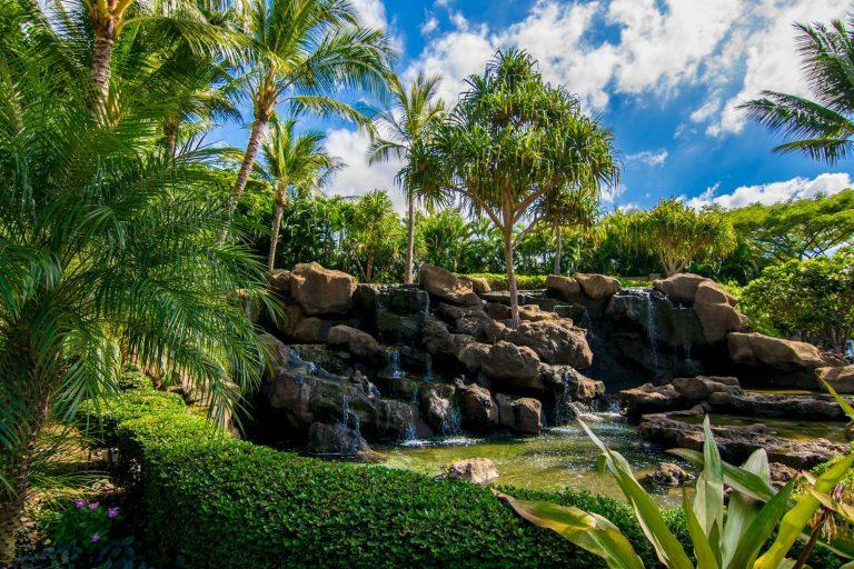 Waterfalls of Ho'olei